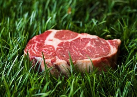 Ontario's Grass-Fed Beef – CHRISTIAN JAX